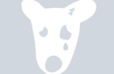 Как посмотреть удаленную или заблокированную страницу ВКонтакте?