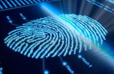 Как узнать номер ID Вконтакте?